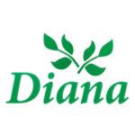 Diana - производство одежды оптом